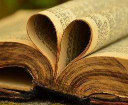 KAPAĞIN ARKASINDAKİ HARİKALAR  (İsmail Hakkı Gelenbevi İmam Hatip Ortaokulu Öğrencilerimizden)
